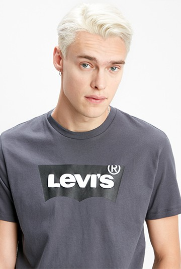 Camiseta Levi's Housemark Graphic gris