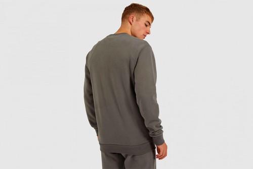 Sudadera Ellesse SL SUCCISO_sweatshirt gris